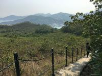 Path down towards Mui Wo