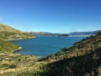 Otago Harbour from Tairoa Head
