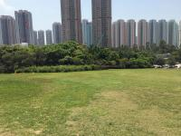 Sloping rooftop lawn, Wetland Park, looking towards Tin Shui Wai