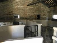 Animal enclosures and storage areas, kitchen block
