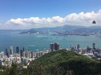 West Kowloon, photo-bombed by a butterfly